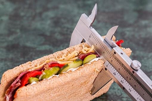 protein sandwich pic